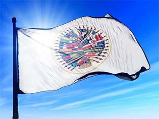 http://cdn.thinkprogress.org/wp-content/uploads/2014/06/Organization-of-American-States-Flag.jpg