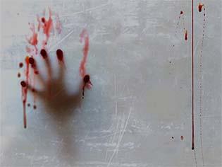 http://ariajwolfe.com/blood-hand/